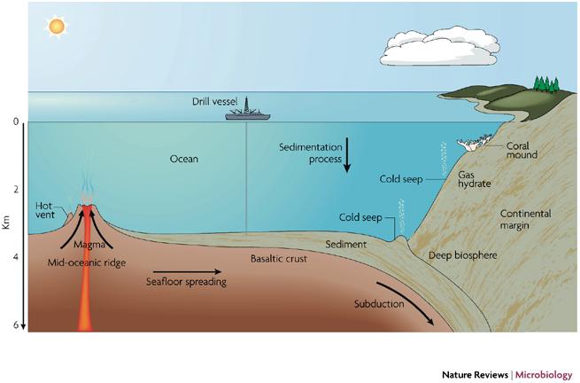 A New Report On The Deep Seas Arctic Portal The Arctic Gateway